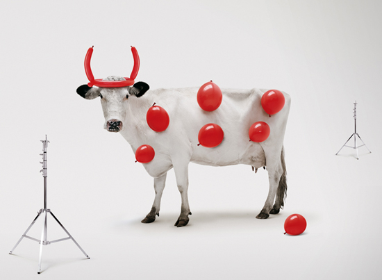 vaca-red-creek